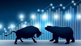 Stock market design of bull and bear with graph and chart vector